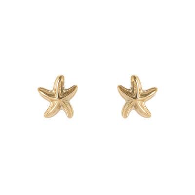 Piccoli orecchini stellina di mare Isola